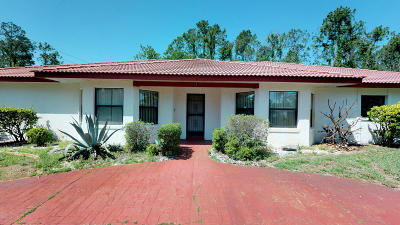 Palm Coast Single Family Home For Sale: 1 Pepperdine Drive