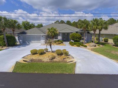 Palm Coast Single Family Home For Sale: 31 Lee Drive