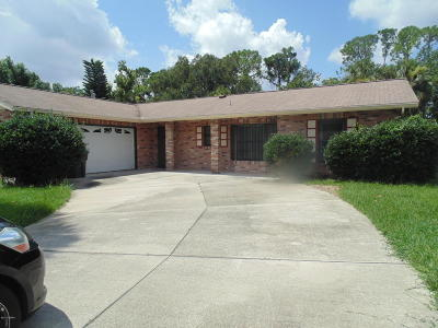 Daytona Beach Single Family Home For Sale: 244 Yorktowne Drive