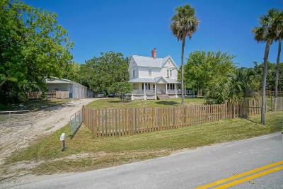 Flagler Beach Single Family Home For Sale: 265 High Bridge Road