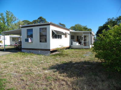Port Orange Single Family Home For Sale: 726 Normandy Boulevard