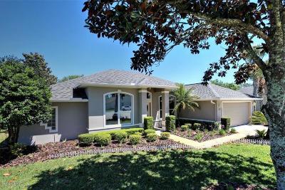 Ormond Beach Single Family Home For Sale: 77 Bridgewater Lane