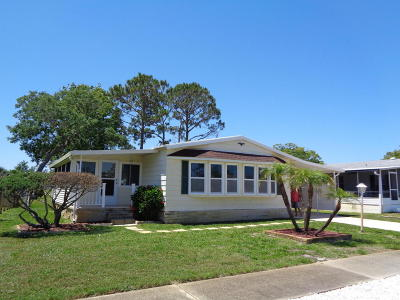 Port Orange Single Family Home For Sale: 733 Indian Hill Drive