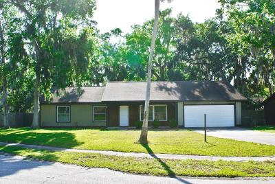 Port Orange Single Family Home For Sale: 479 Spruceview Drive