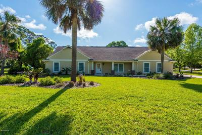 Ormond Beach Single Family Home For Sale: 23 Walnut Lane