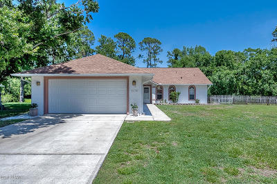 Port Orange Single Family Home For Sale: 3778 Long Grove Lane