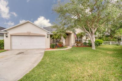 Port Orange Single Family Home For Sale: 6517 Shahab Lane