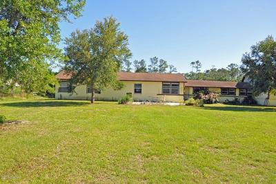 New Smyrna Beach Single Family Home For Sale: 3730 Lettuce Lane