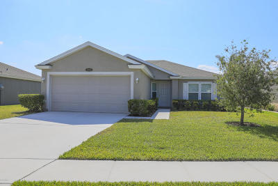 Port Orange Single Family Home For Sale: 5340 Peach Blossom Boulevard
