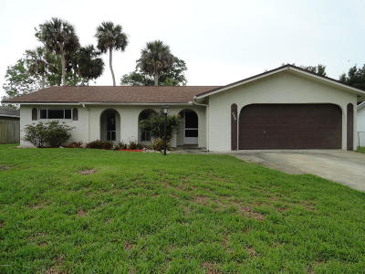 Port Orange Single Family Home For Sale: 229 Brittany Avenue