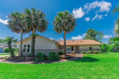 Daytona Beach Single Family Home For Sale: 905 Pelican Bay Drive