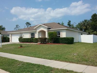 Daytona Beach Single Family Home For Sale: 148 Fountain Lake Boulevard