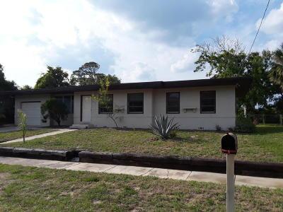 Daytona Beach Single Family Home For Sale: 273 Hartford Avenue