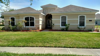 Port Orange Single Family Home For Sale: 4236 Hidden Lake Drive