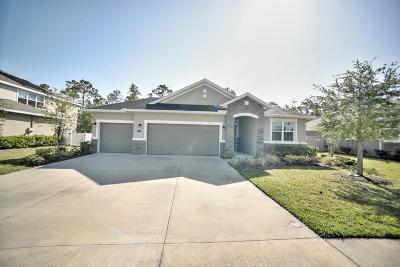 Hunters Ridge Single Family Home For Sale: 53 Abacus Avenue