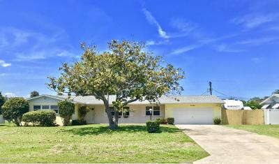 South Daytona Single Family Home For Sale: 918 Hamlin Drive