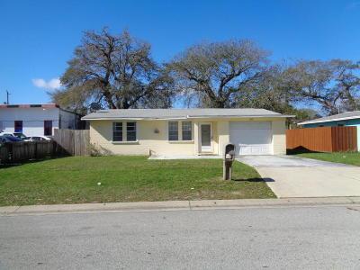 Volusia County Single Family Home For Sale: 103 Mason Park Drive
