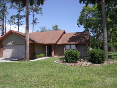 Palm Coast Single Family Home For Sale: 3 Point Place