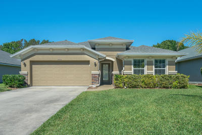 Port Orange Single Family Home For Sale: 6816 Vintage Lane
