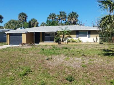 New Smyrna Beach Single Family Home For Sale: 13 Sand Dune Drive