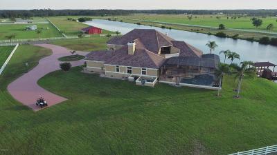 Flagler County, Volusia County Single Family Home For Sale: 700 Hammett Lane