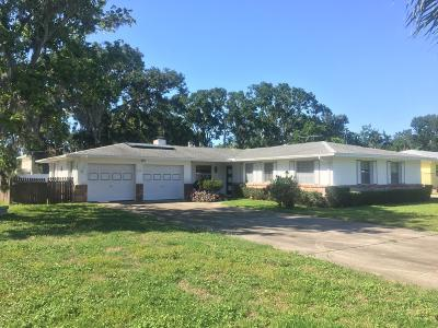 Volusia County Single Family Home For Sale: 888 Pineapple Road
