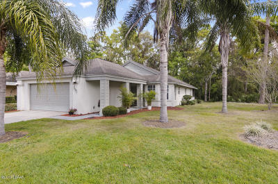 Daytona Beach Single Family Home For Sale: 113 Braeburn Circle