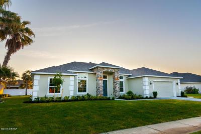 New Smyrna Beach Single Family Home For Sale: 141 Mangrove Estates Circle