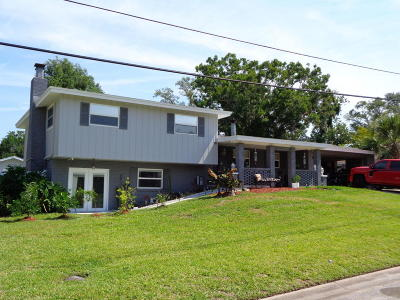 Ormond Beach Single Family Home For Sale: 308 Seminole Drive