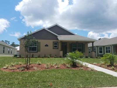 New Smyrna Beach Single Family Home For Sale: 3401 Meleto Boulevard