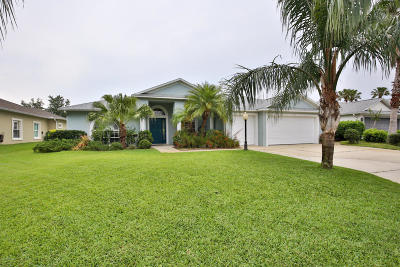 Port Orange Single Family Home For Sale: 2110 Springwater Lane