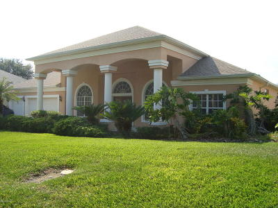 Port Orange Single Family Home For Sale: 6094 Sabal Creek Boulevard