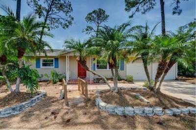 New Smyrna Beach Single Family Home For Sale: 14 Fairway Circle