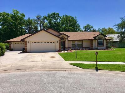 Port Orange Single Family Home For Sale: 6086 Summerlake Drive