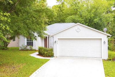 Port Orange Single Family Home For Sale: 6040 Winding Ridge Lane