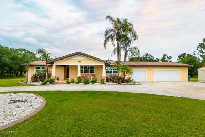 Port Orange Single Family Home For Sale: 1967 Fidler Lane