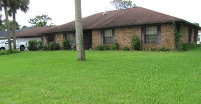 New Smyrna Beach Single Family Home For Sale: 122 Sea Street