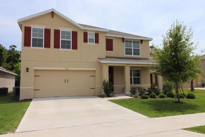 New Smyrna Beach Single Family Home For Sale: 453 White Coral Lane