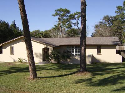 Port Orange Single Family Home For Sale: 863 Taylor Road