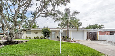 New Smyrna Beach Single Family Home For Sale: 820 Oakview Drive