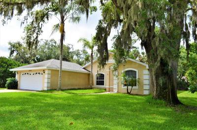 Port Orange Single Family Home For Sale: 6096 Summerlake Drive