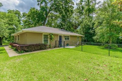 Deland Single Family Home For Sale: 104 Plumosus Park Drive