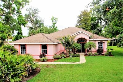 Ormond Beach Single Family Home For Sale: 3 Cotton Mill Court