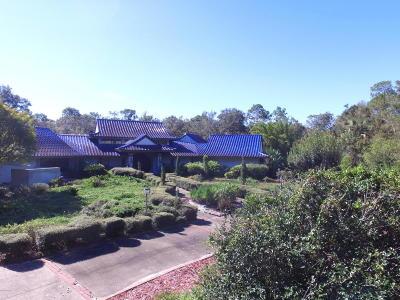 Deland Single Family Home For Sale: 1297 Glenwood Road