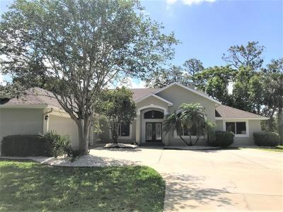 Ormond Beach FL Single Family Home For Sale: $449,900