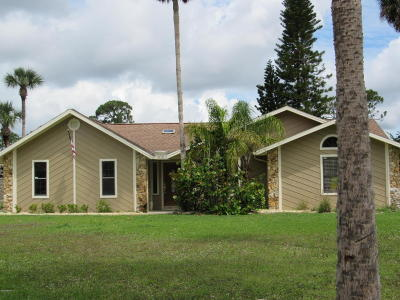 Volusia County Single Family Home For Sale: 100 Snowgoose Court
