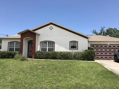 Palm Coast Single Family Home For Sale: 121 N Florida Park Drive