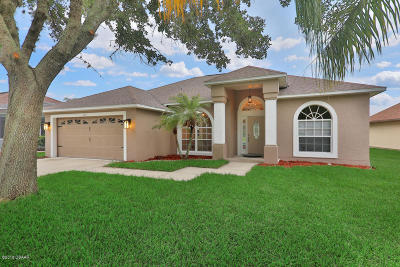 Spruce Creek Fly In Single Family Home For Sale: 3218 Vail View Drive