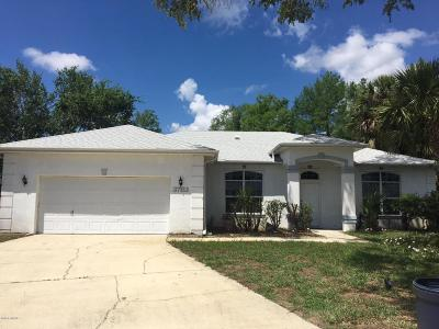 Port Orange Single Family Home For Sale: 3783 Sweet Grove Court