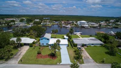 Volusia County Single Family Home For Sale: 231 Middle Way